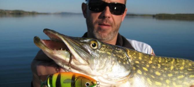 Pesca de lucios en marzo